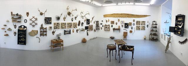 Cabinet of natural memories