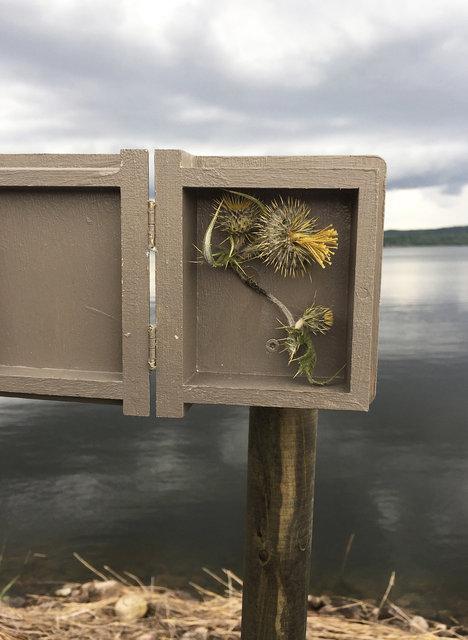 Cabinet of natural (Sjuhäradsrundan) memories