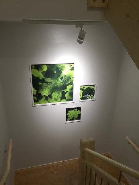 traphuis 3.jpg