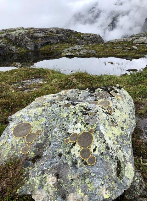 Symbiosis 2 Norway