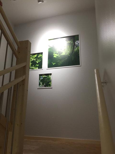traphuis 4.jpg