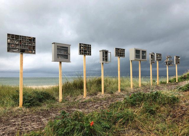 Cabinet of natural (Vadehavet) memories