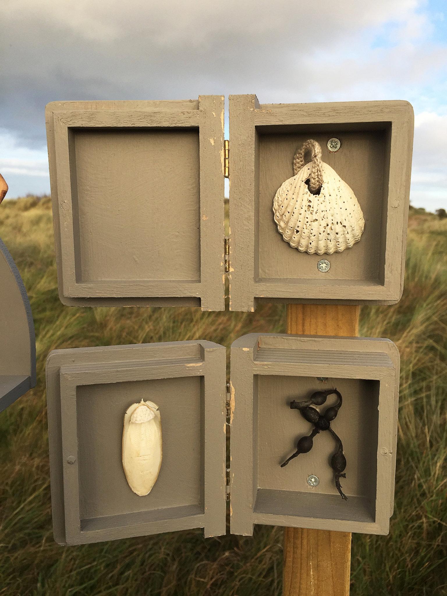 Cabinet of natural (Ameland) memories