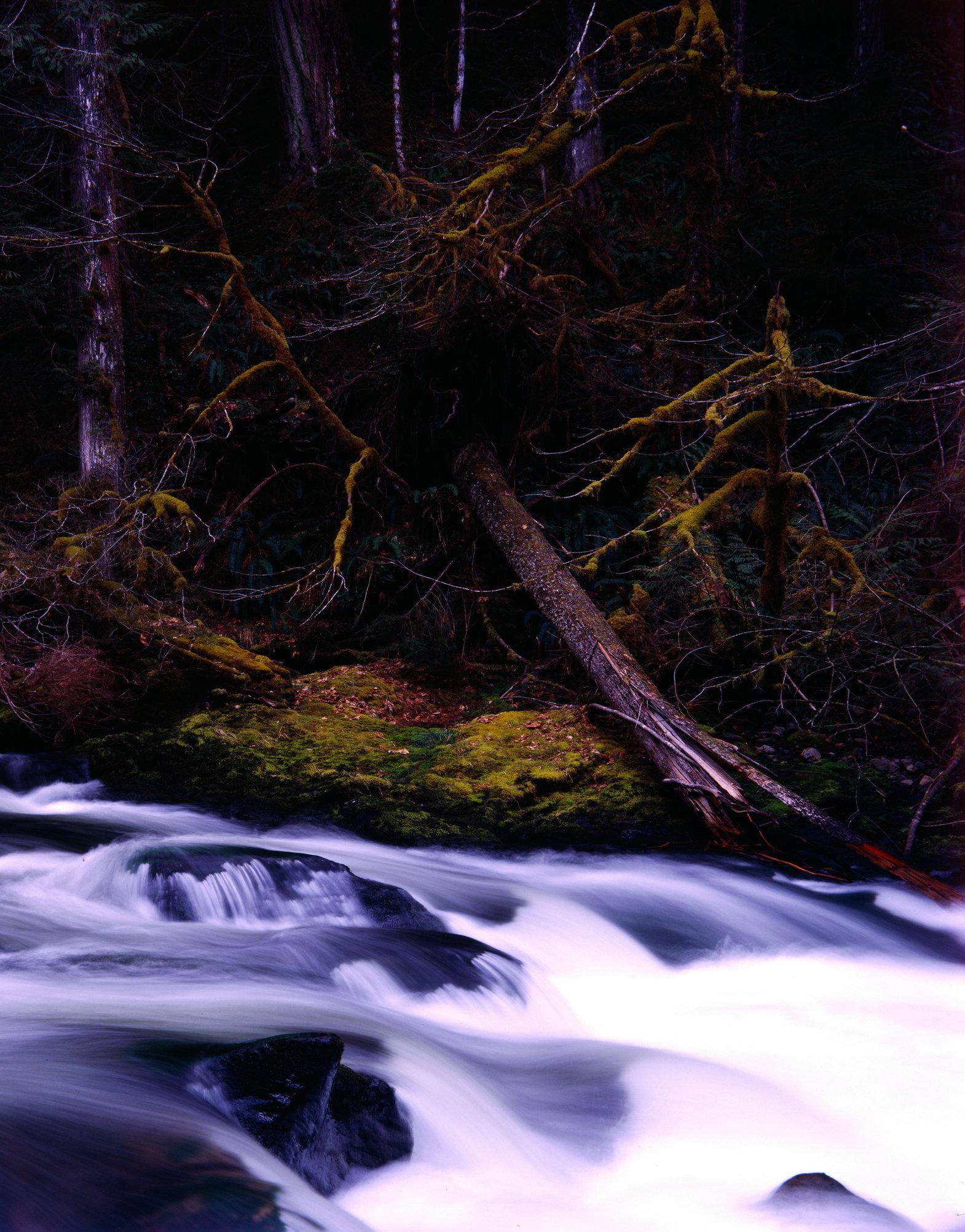 salmon river no.1.jpg