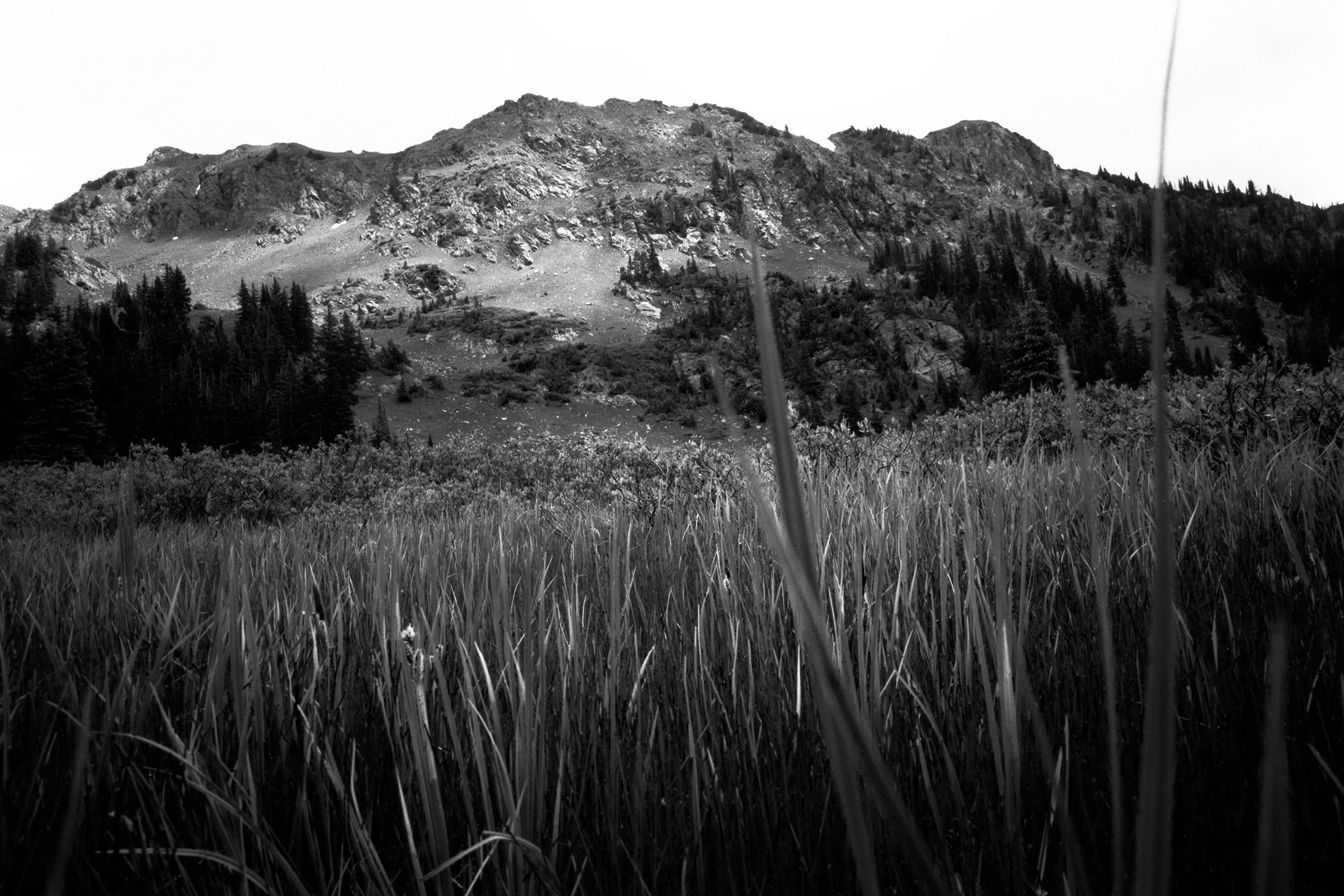 0001_Bowen Parika Mountains, Colorado, Summer 2015. Scan #30.tif
