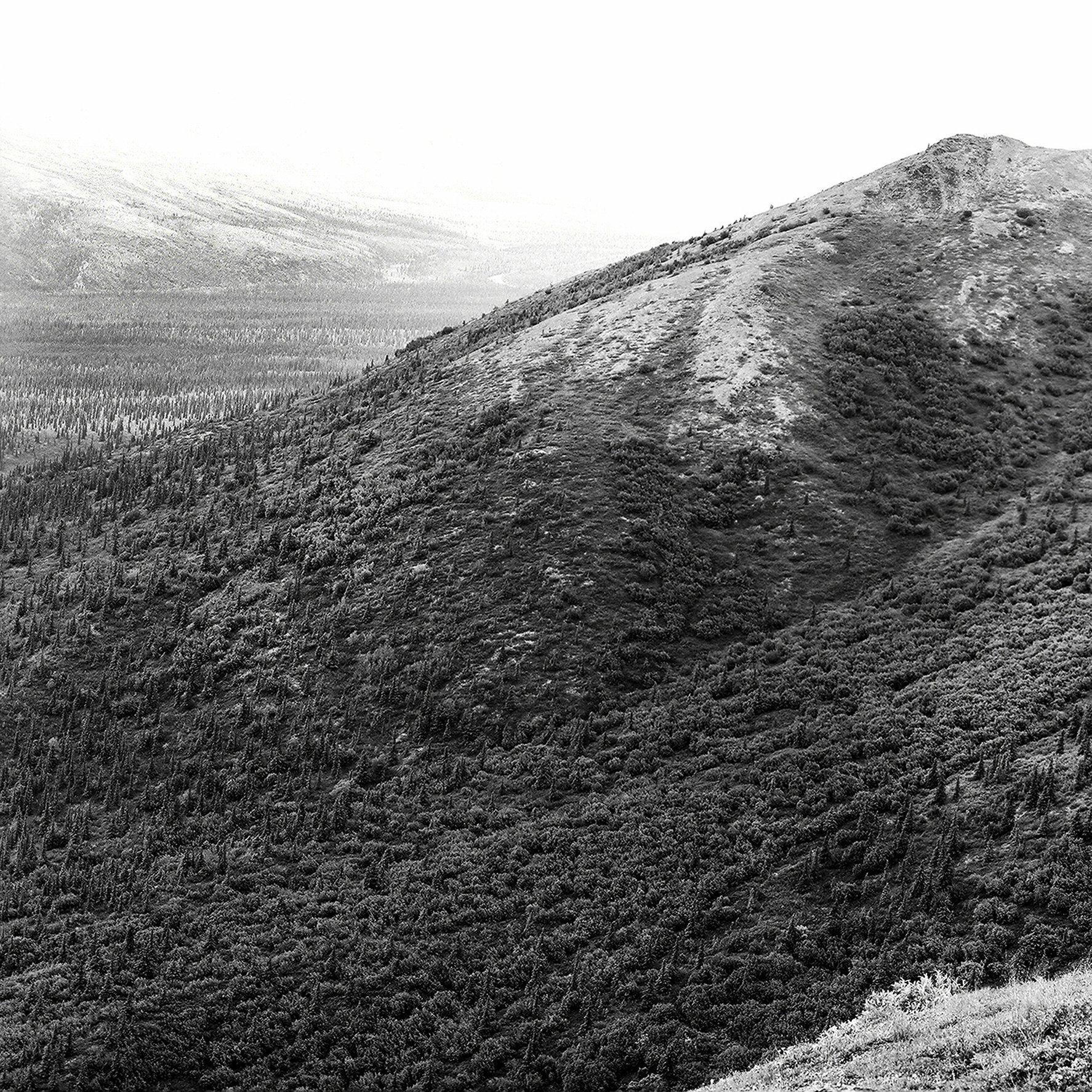 0001_denali national park.tif