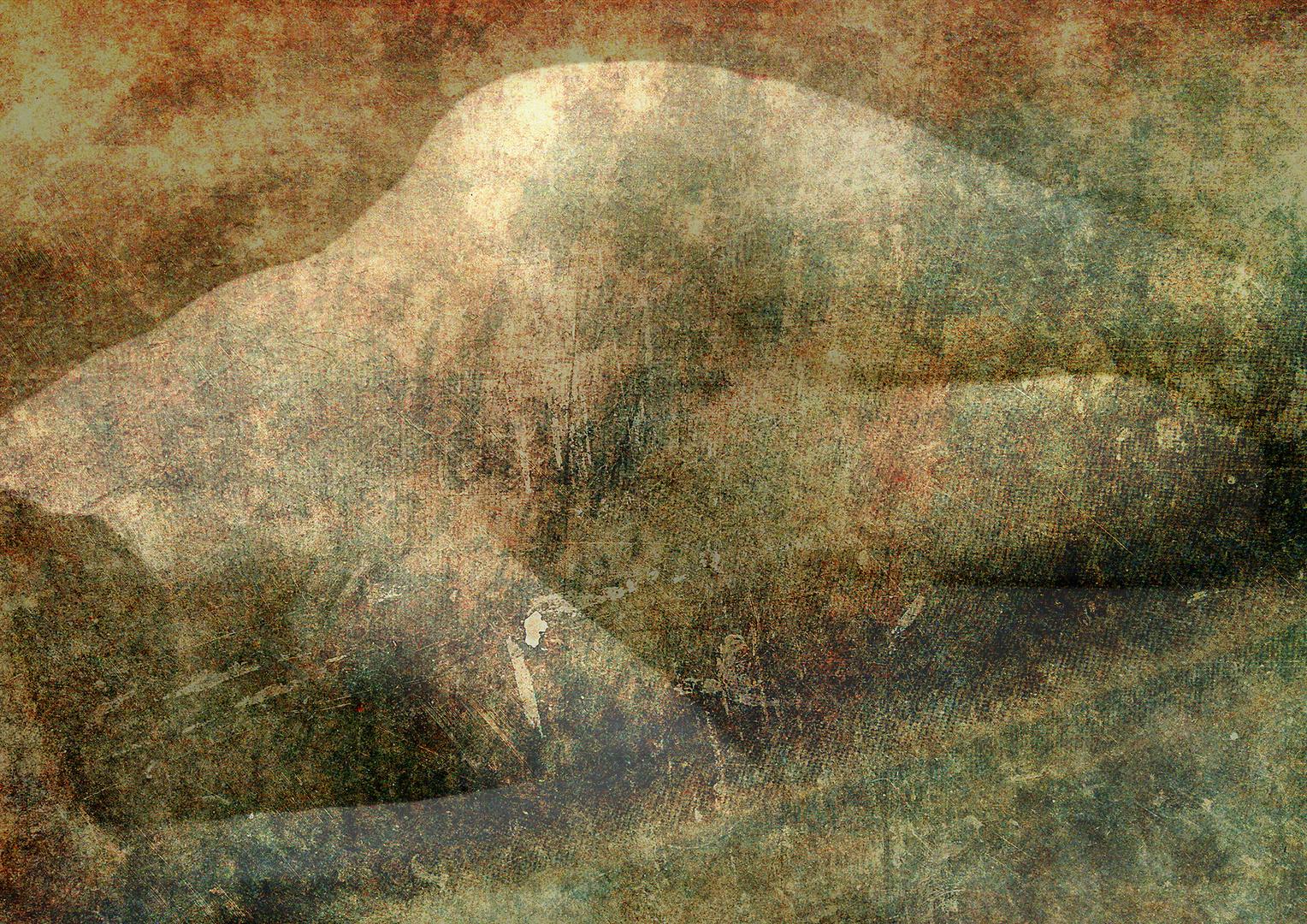 IM4_3179  texturef.jpg