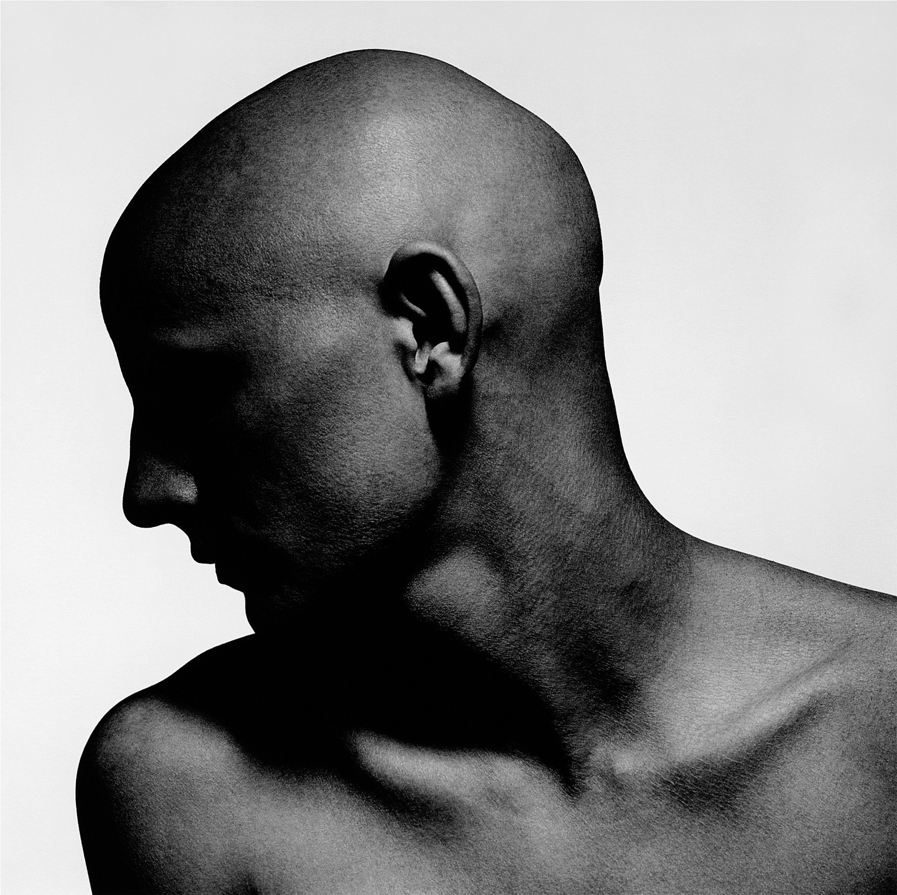 Dark portrait of bald male with strong profile