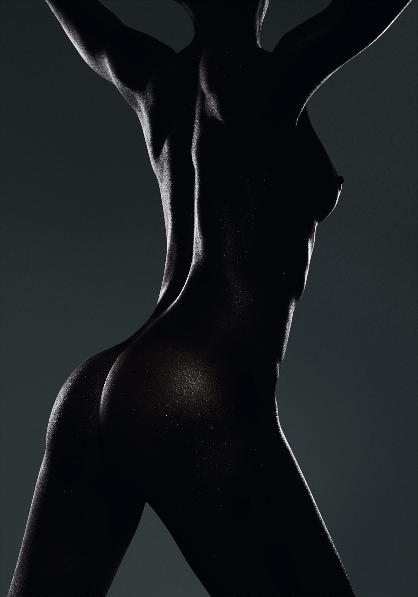 Dark nude female torso in silhouette
