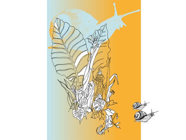 LA_TROPICALE-web_Artboard 2.jpg