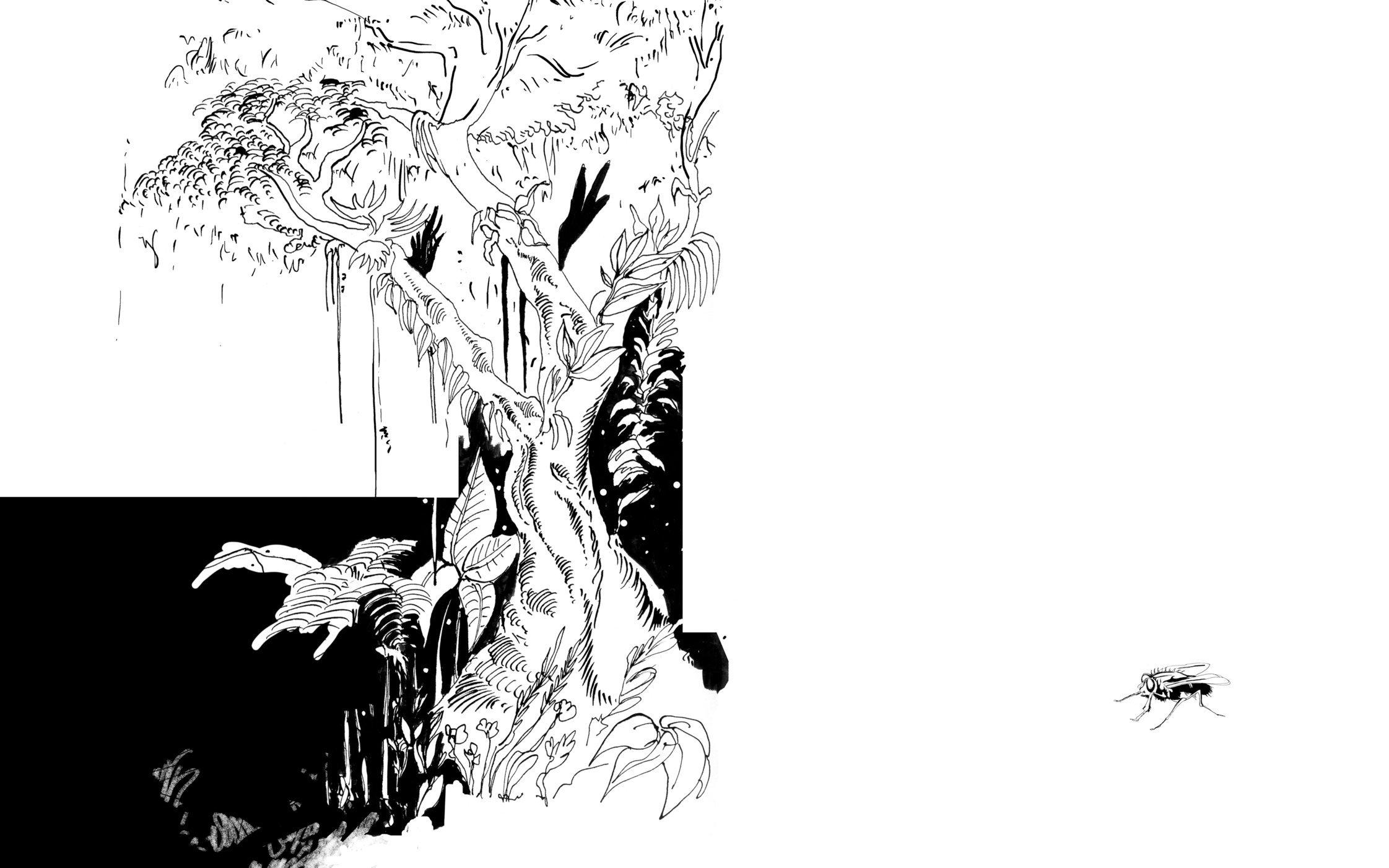 illustrationarbre.jpg