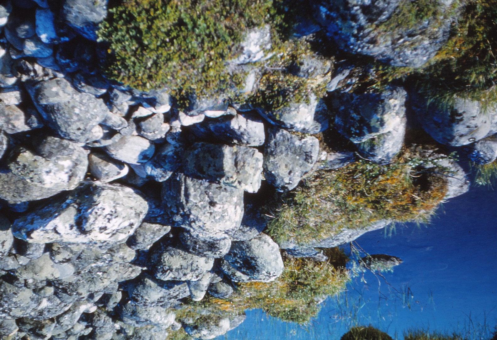 967 (3) stenen
