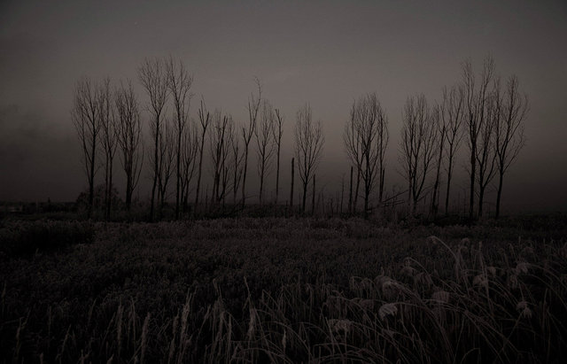 winterview 1