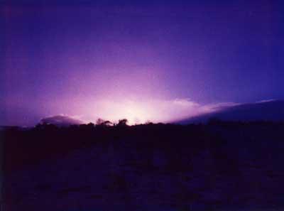 Purple Sunset 1 by Alison Gracie