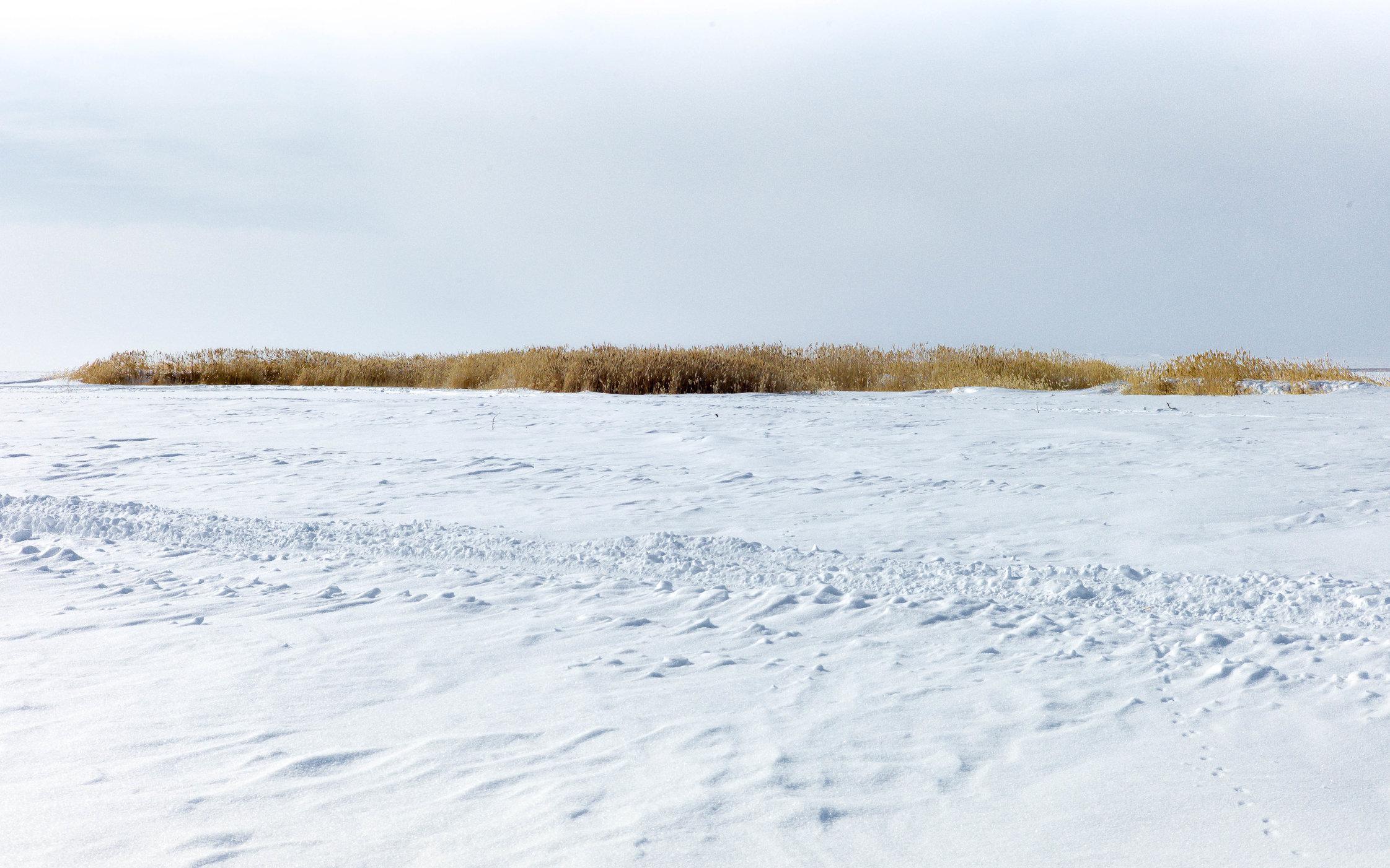 Aral Landscapes-34.jpg