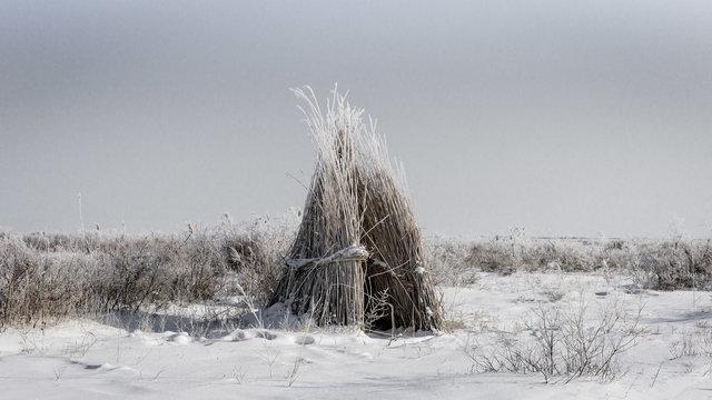 Aral Landscapes-59-bewerkt.jpg