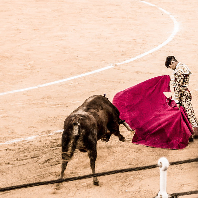 The Bullfight-189-bewerkt.jpg