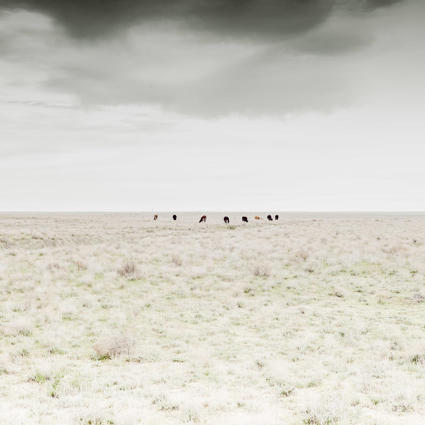 Kazach Landscapes-2.jpg