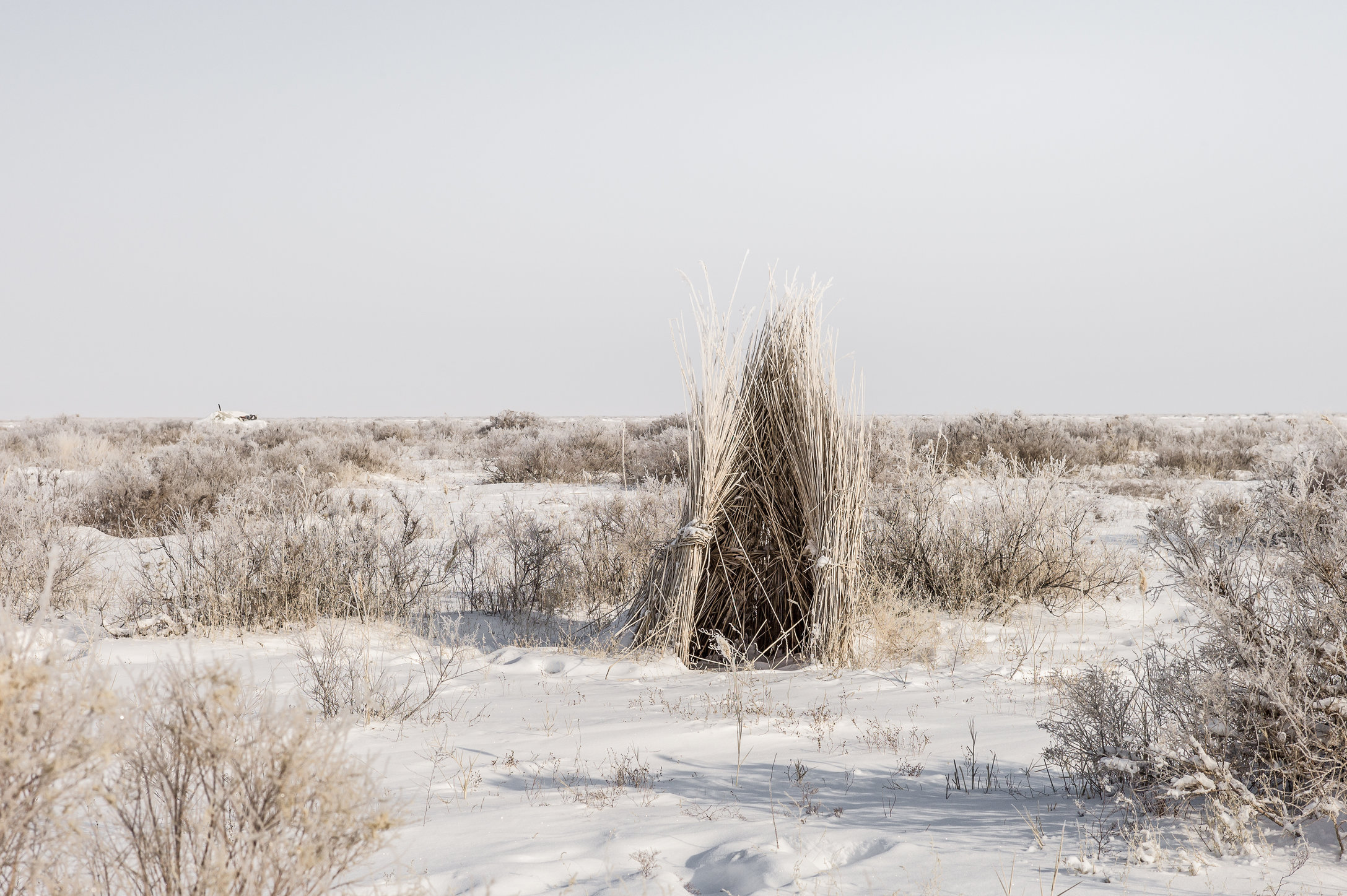 Aral Landscapes-56-bewerkt.jpg