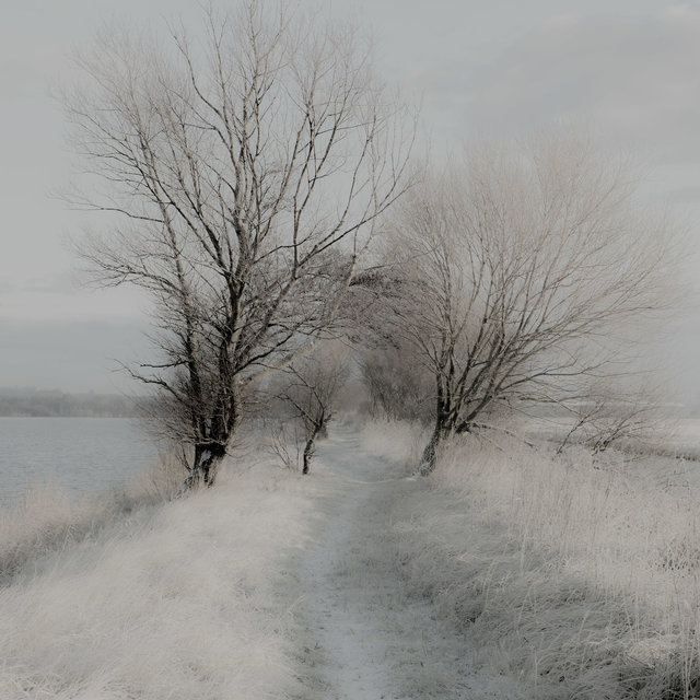 Untitled Monochroms-10.jpg