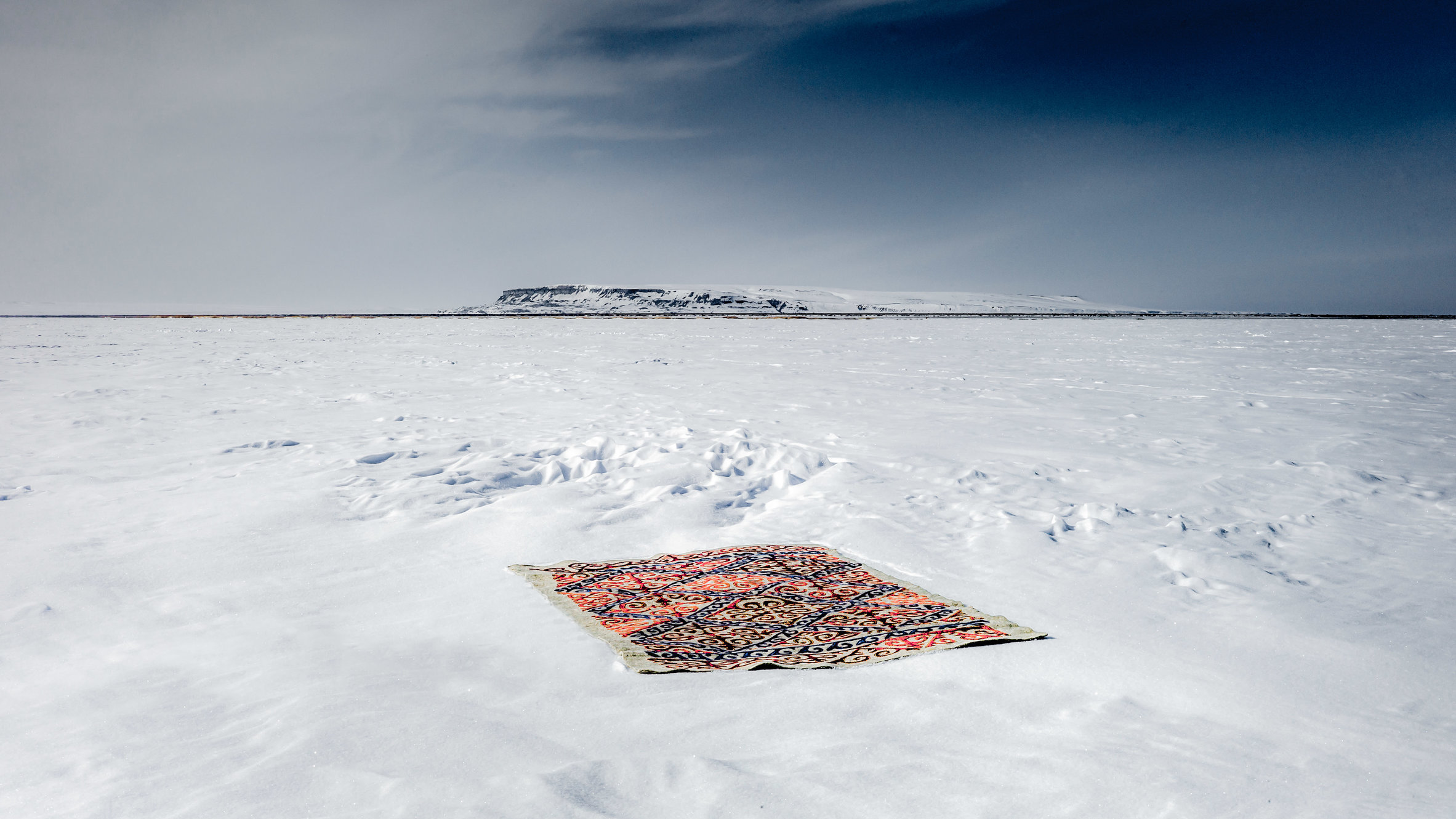 The carpet in the landscape-66-bewerkt.jpg