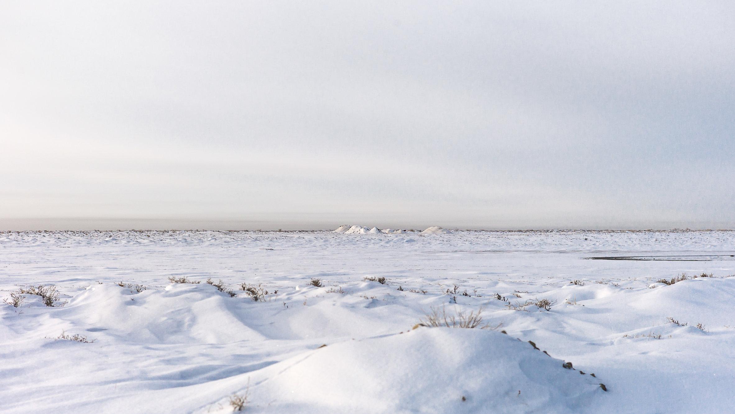 Aral Landscapes-2-bewerkt.jpg