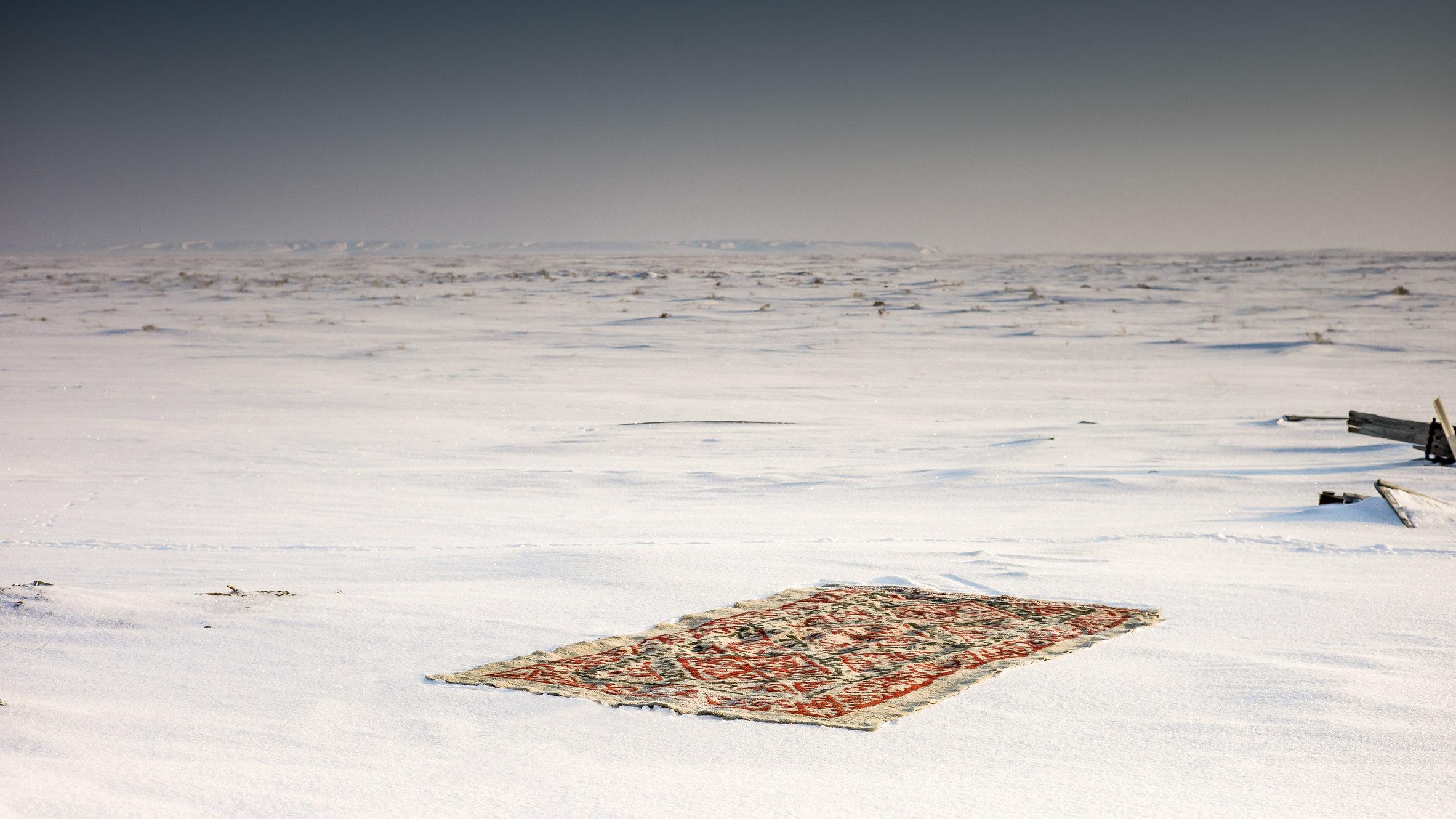 The carpet with-53-bewerkt.jpg