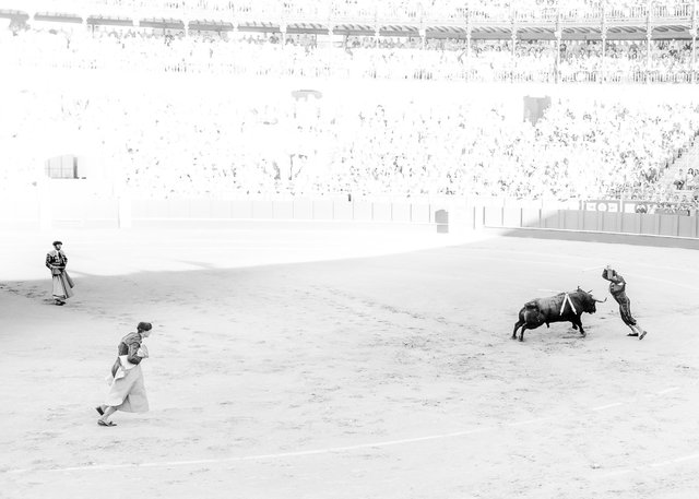 The Bullfight-33.jpg