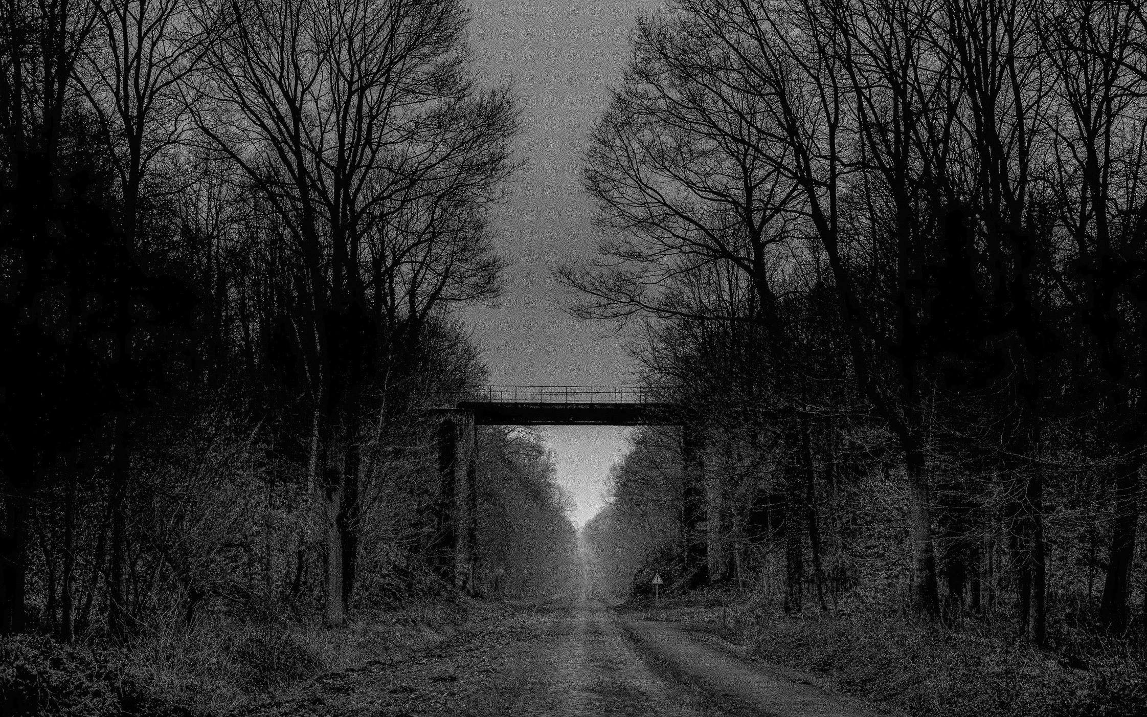 Trouée d'Arenberg (Bos van Wallers) *****