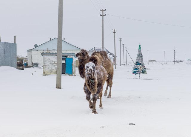 Snowing Tastubek-45.jpg