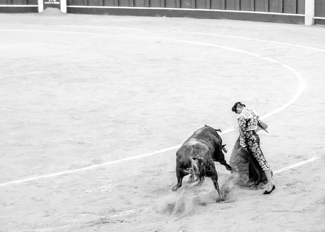 The Bullfight-193-bewerkt-2.jpg