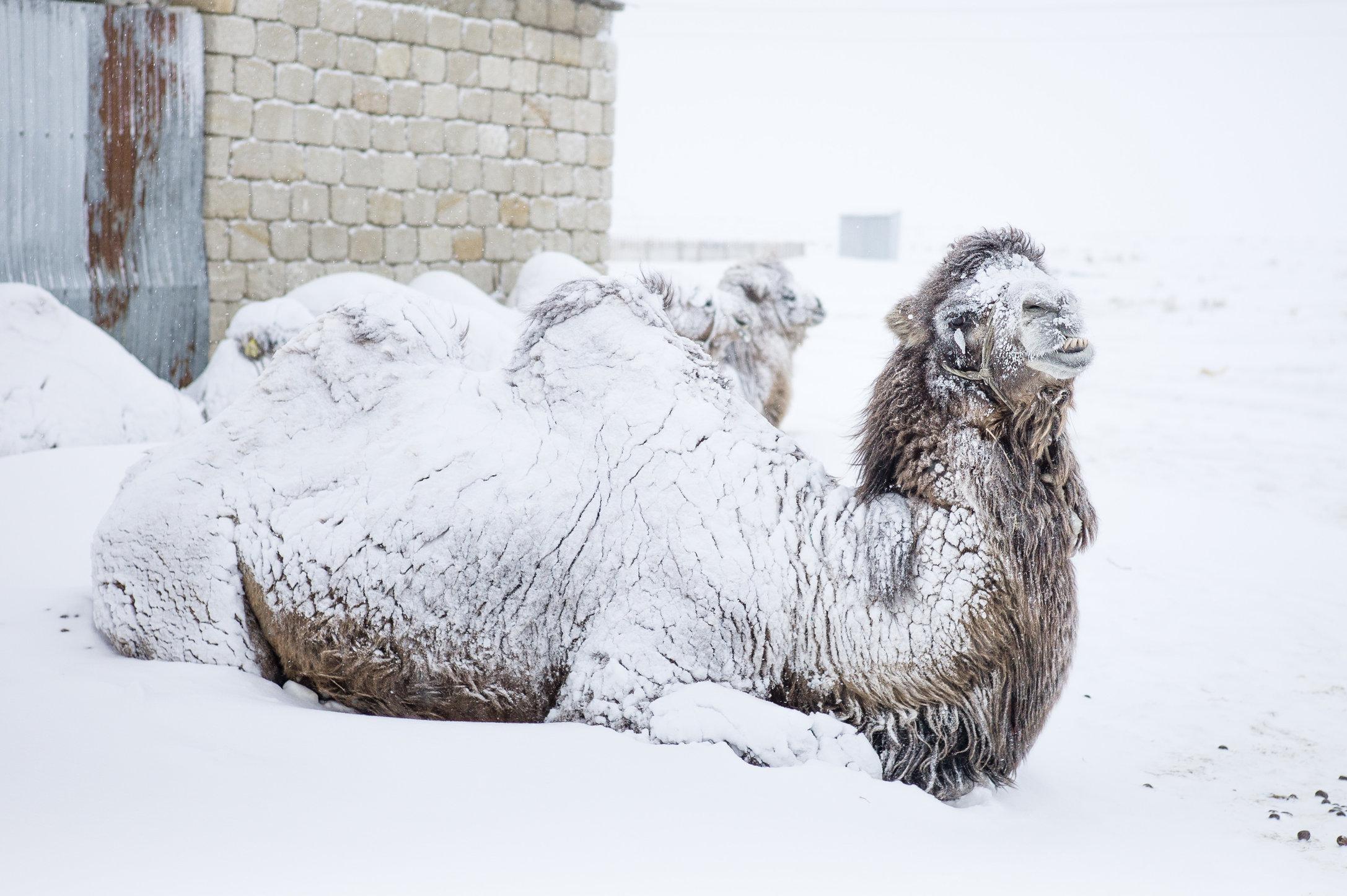 Snowing Tastubek-24.jpg