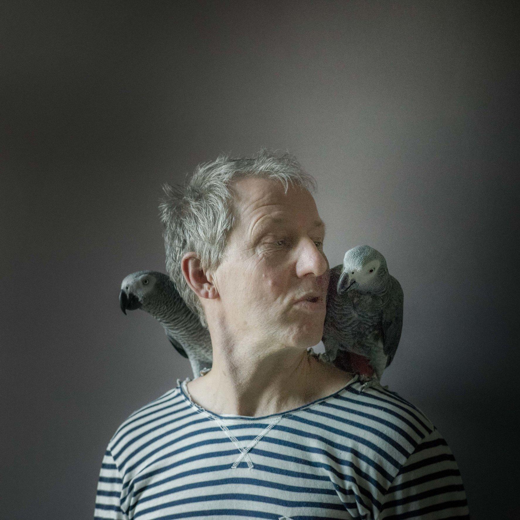 daan _ parrots