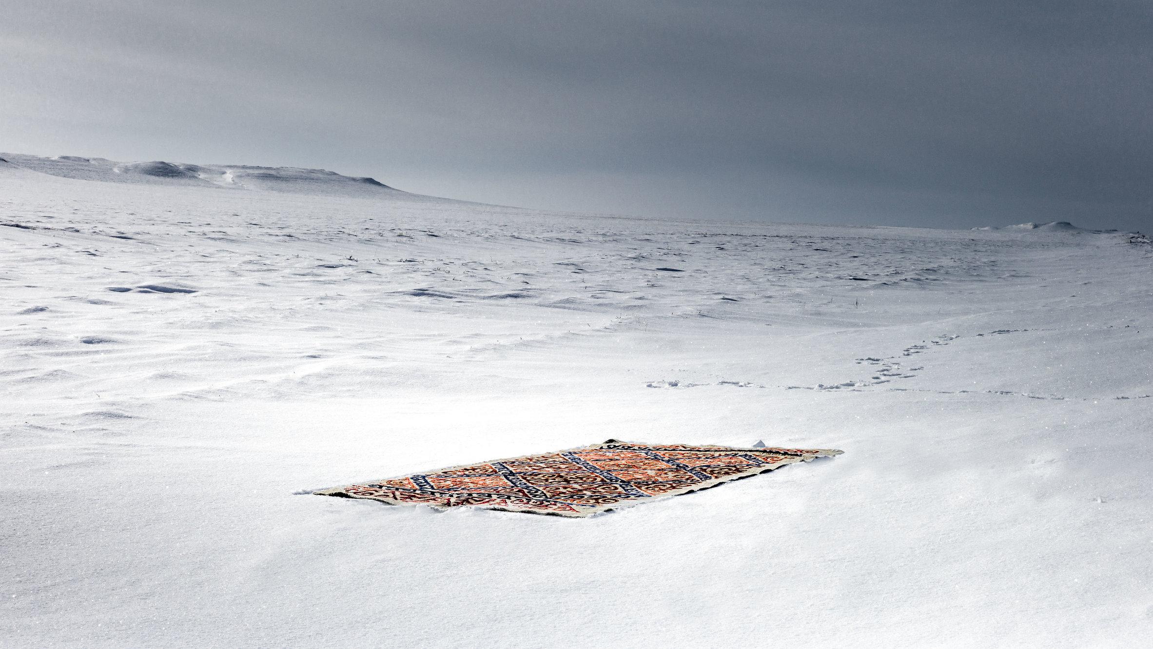 The carpet in the landscape-17-bewerkt.jpg