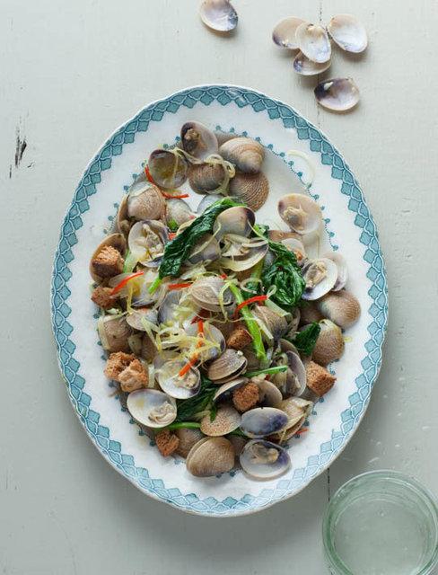 Italian Food Safari Cook Book
