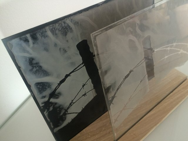 Installation-VERDUN IN MEMORIAM-collodion-015.JPG