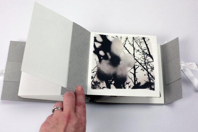 SEL-Bucolique Artist Book-07.jpg
