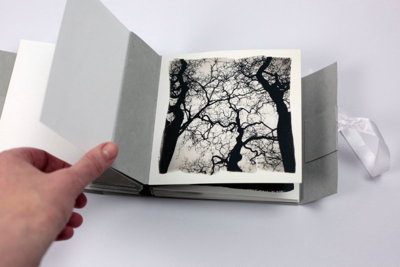 SEL-Bucolique Artist Book-06.jpg