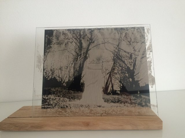 Installation-VERDUN IN MEMORIAM-collodion-011.JPG