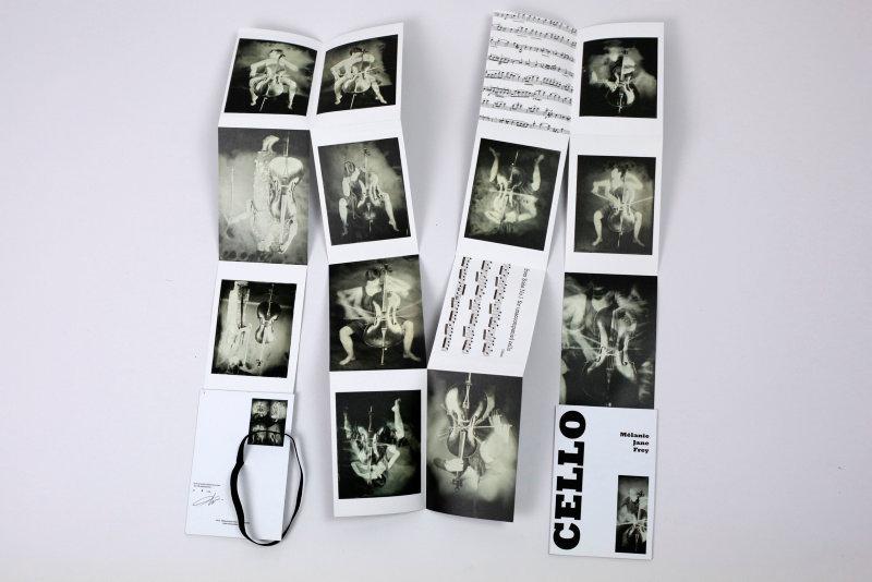 SEL-Artist book Cello-06.jpg