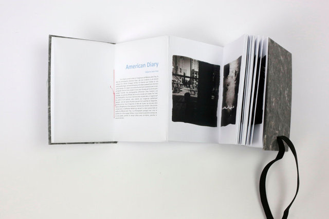 SEL-American DIary Artist Book-06.jpg