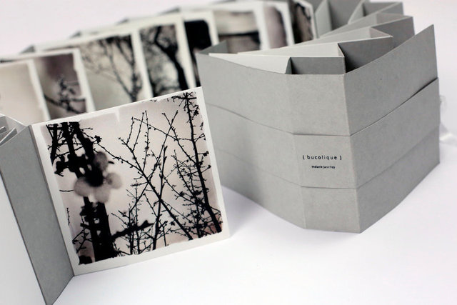 SEL-Bucolique Artist Book-01.jpg