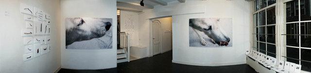 Florica Kyriacopoulos, gallery installation view