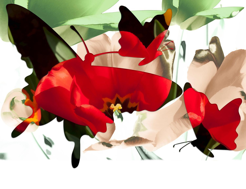 butterfly-09art.jpg