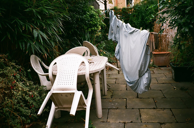 linge - glyn rd backyard.jpg