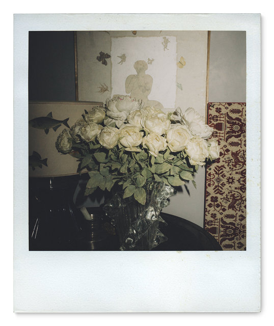 029_Polaroid SX70_DSC05470.jpg