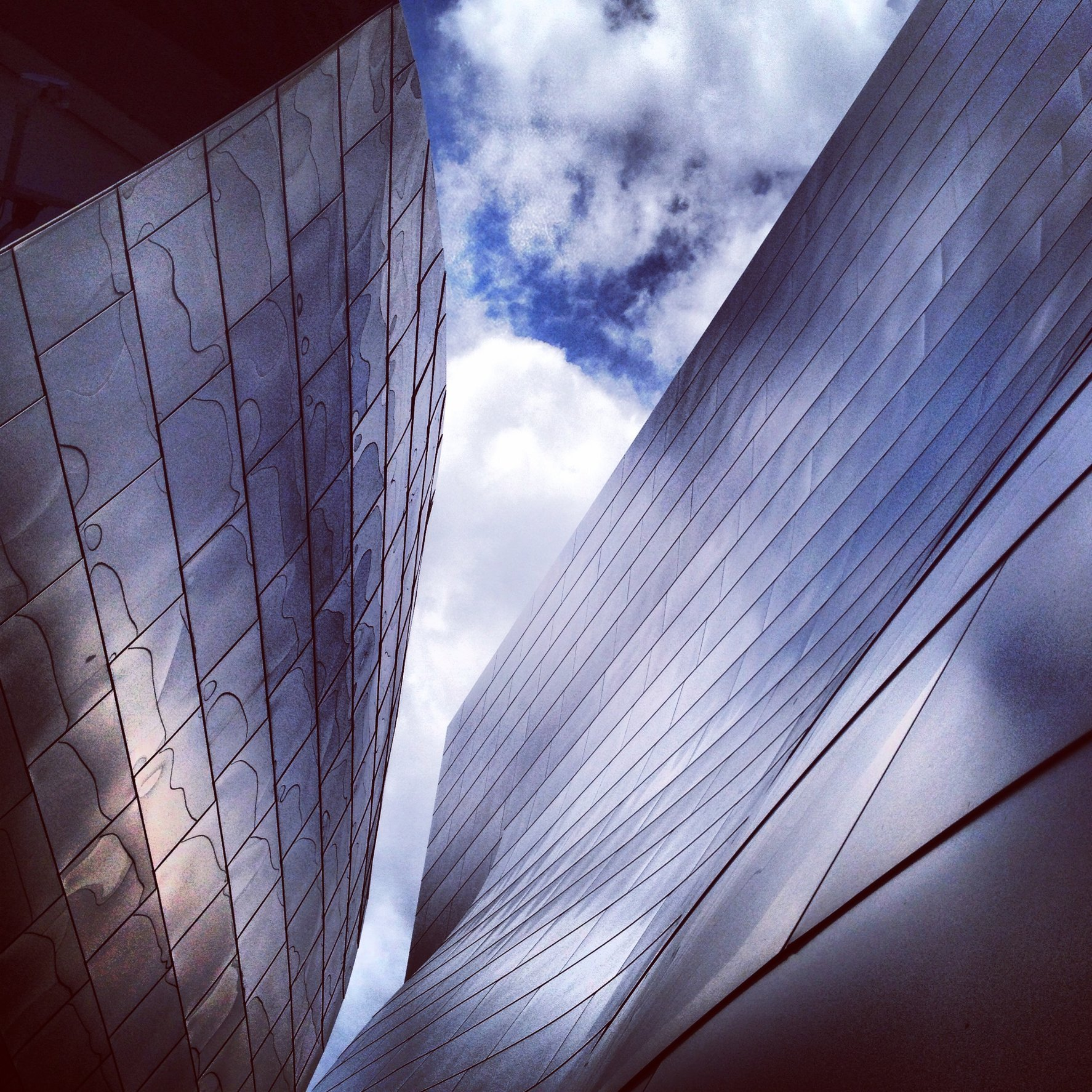 WALT DISNEY CONCERT HALL - PURPLE 4