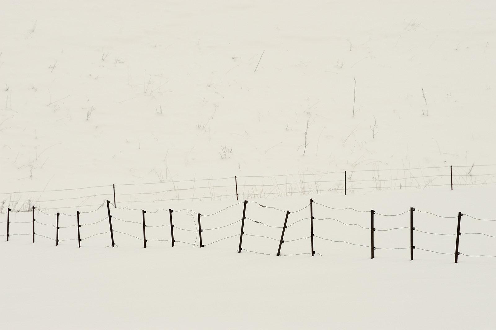 Schnee.Zaun III