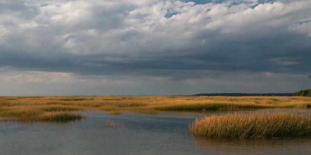 Fall Marsh-6565.tif