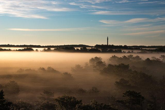Provincetown Mist-6860.tif